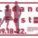 L1danceFest2013_image_final_byKAnna_fekvo_small
