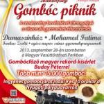 gomboc-piknik_plakat_2013-09-demo-jav6