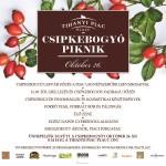 csipkebogyo_piknik