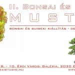 II bonsai es suiseki mustra kiallitas hungary erd