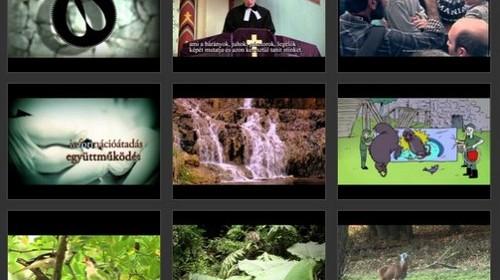 godolloi nemzetkozi termeszetfilm-fesztival